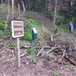 Trailhead Maintenance May 2015 (3)